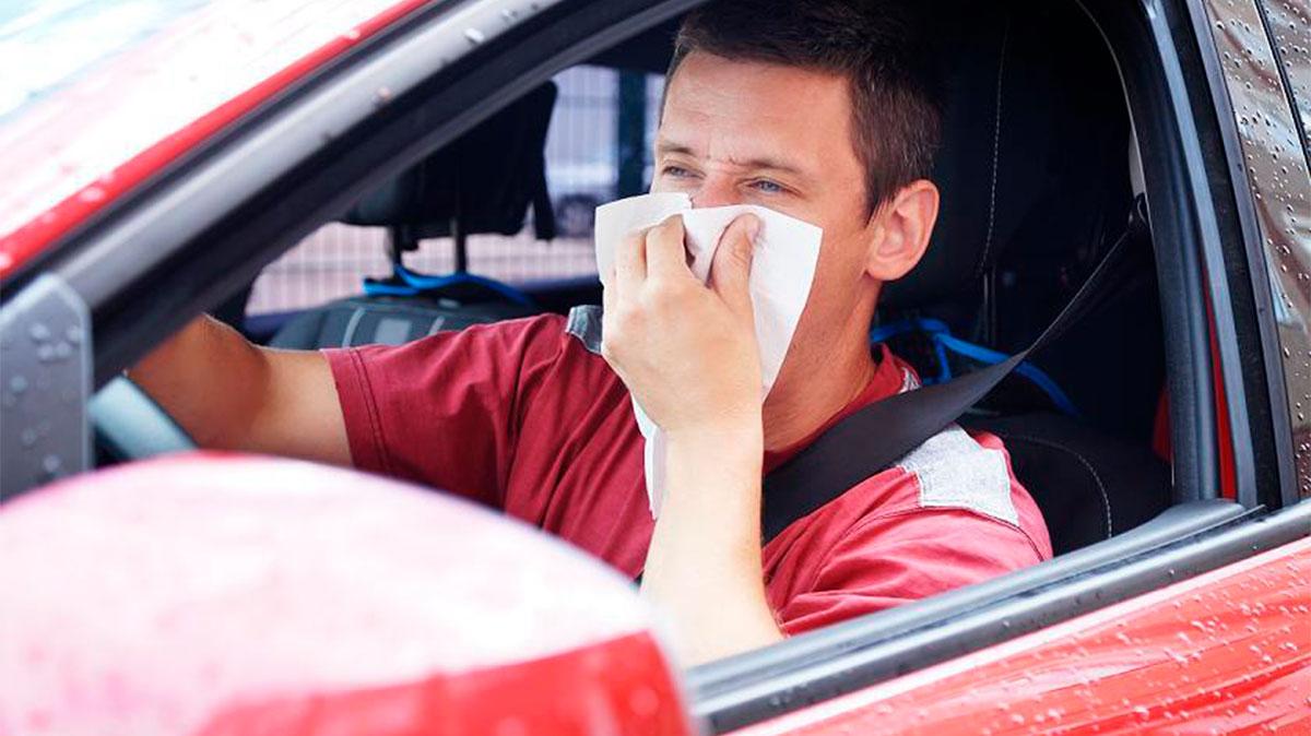 alergia al volante