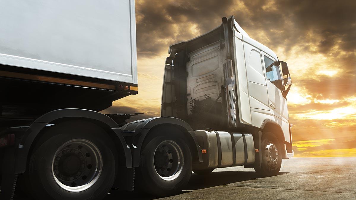 Top 10 de vídeos y consultas de los transportistas en 2020