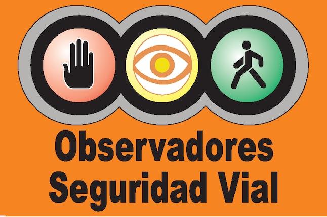 observadores seguridad vial
