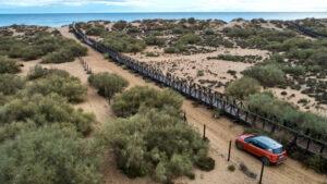 Fotos del Parque Nacional de Doñana