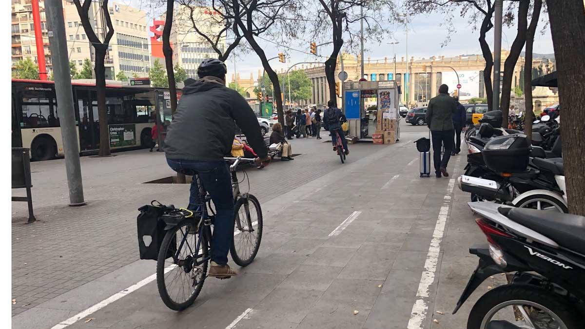 bicicleta dgt 1