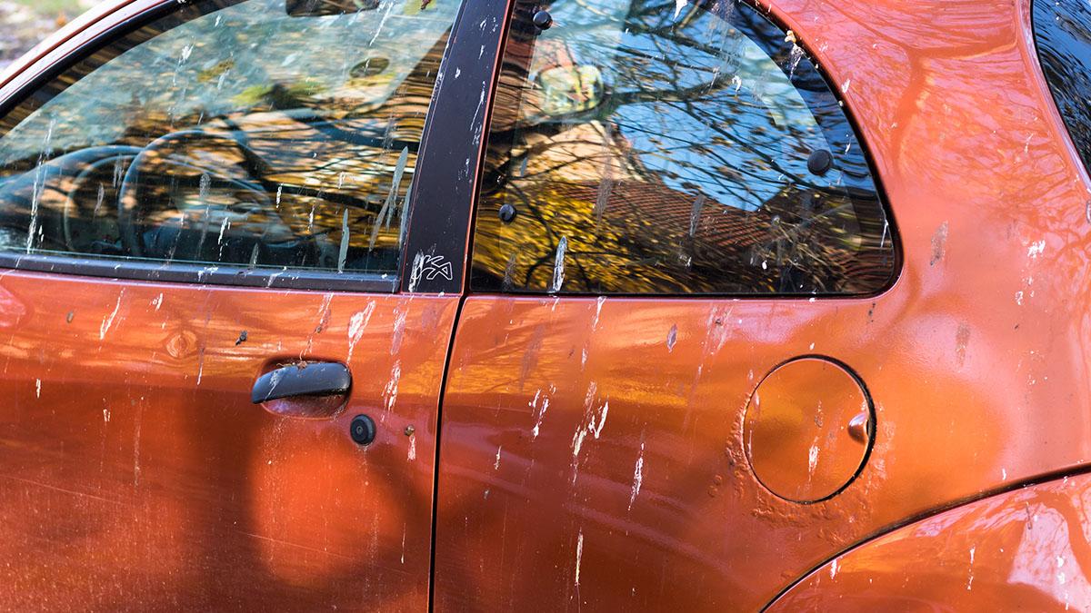 coche sucio