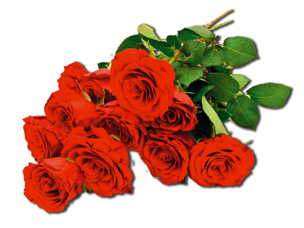 hermoso ramo de rosas ro1 1