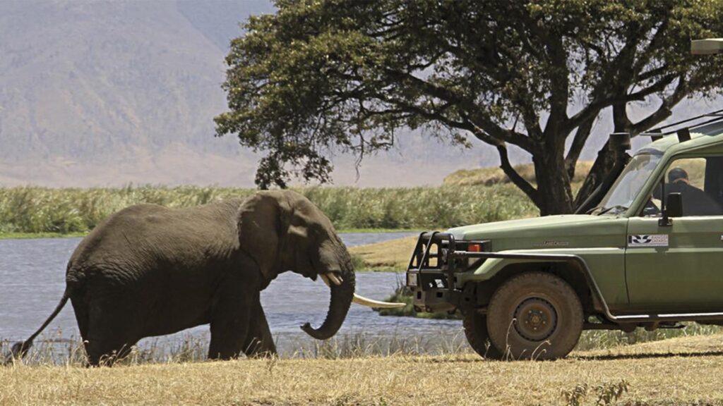 Viaje a Kenia Emilio Scotto